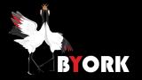 byork logo