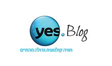 yes blog